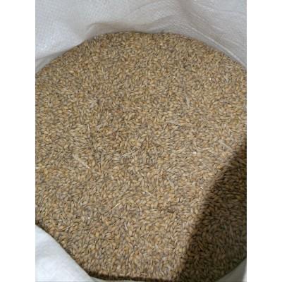 Kŕmny žľab pre hydinu plastový 50x12 cm